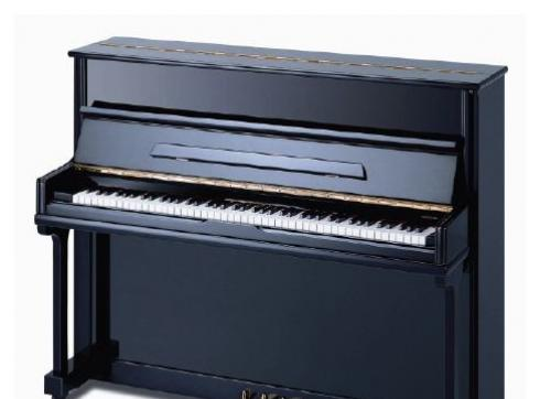Reimann KL 117 K1 schwarz poliert