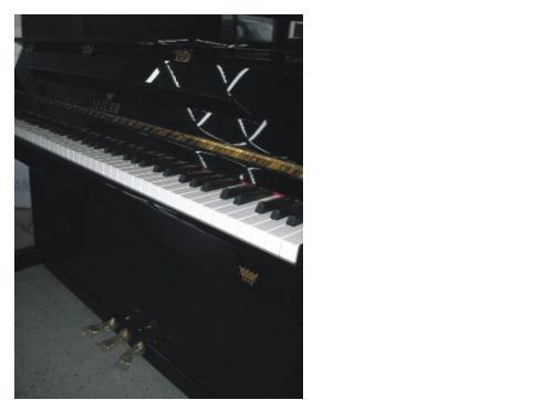 Eduard Seiler Klavier 116