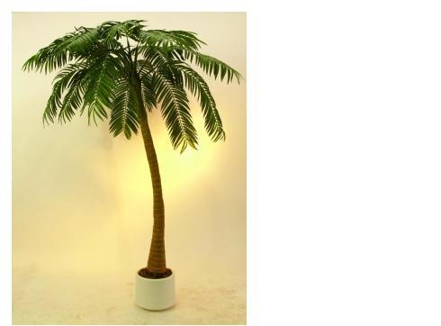 Palme 1-stämmig mit 810 Blättern 300cm