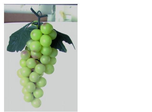 Trauben mit Blättern grün 1 Stück